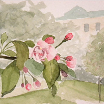 Apple tree blossoming in a park in Helsinki, Finland. Original watercolor painting.