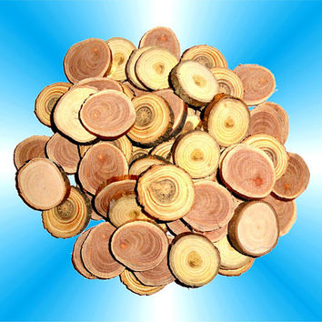 Jewelry Findings Supplies, Small Wood Slices, Wood Discs, Wood Blanks. Various Wooden Slices