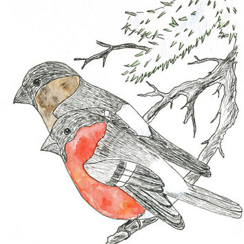 Christmas Card With 2 Bullfinches; cheerful handmade greeting card, ink pen drawing / watercolor painting, set of 4