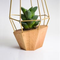 Elegant Wooden Planter - Geometric Wood Brass Gem - for Succulent, Cactus and Air plants. Handmade in EU