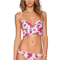 Tori Praver Swimwear Jess Bikini Top in Casablanca Shell