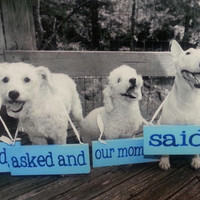 Proposal - Engagement Sign:  Choose Colors and Wording - Include the dog - Photo Prop, Keepsake