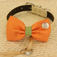 Orange Dog Bow Tie attached to dog collar ring bearer, Orange and green wedding
