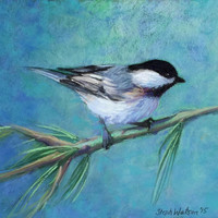 Chickadee on a Branch, Original Painting,Pastel Painting