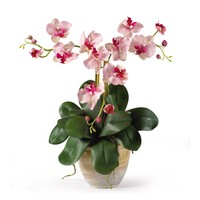 Triple Mini Phalaenopsis Silk Flower Arrangement