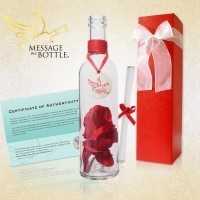 Official Message In A Bottle Website | Gifts and Invitations