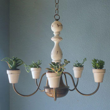 Shabby Chic Hanging Plant-elier - Pre-Order Today
