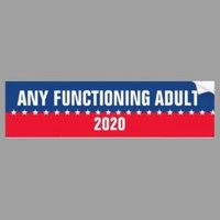 Any Functioning Adult 2020 Bumper Stick