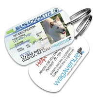 Massachusetts Driver's License Pet Tag
