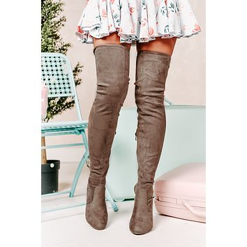 Evalina Faux Suede Thigh High Boots (Taupe)