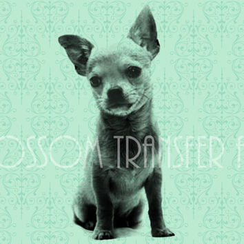 Chihuahua Dog - Digital Images - Iron on Transfer - Download for papercrafts - Printables - Graphics - DIY -  2504