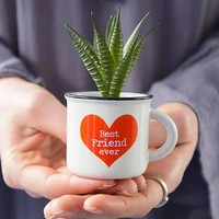 Best Friend Ever Mini Mug with Succulent