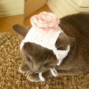 Girl Cat Hat CROCHET PATTERN Flower Cat Hat Rose Cat Hat Girly Cat Hat for a Cat Accessories Cat Supplies Cat Photography Prop Photo Prop