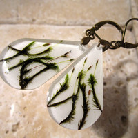 Moss (Racomitrium aciculare?) Earrings, woodland, forest, bryophytes, plant jewellery, leaf jewelry
