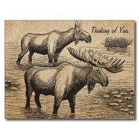 Burlap Vintage Moose Thinking of You Postcard from Zazzle.com