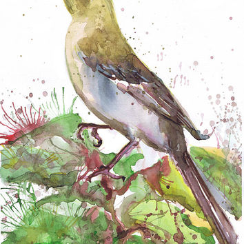 Art print, mockingbird, state bird , watercolor, bird , Texas, Florida, Arkansas, Mississippi, Tennesse, Northern mockingbird, Illustration