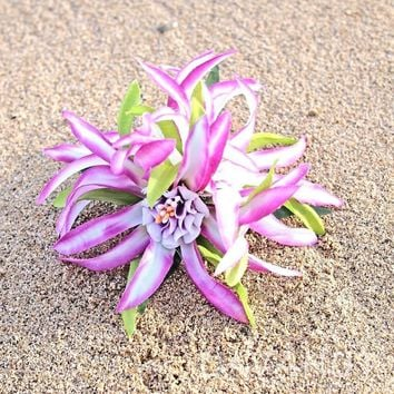 Aster Purple Hawaiian Flower Hair Clip
