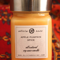 Apple Pumpkin Spice 9oz Natural Soy Wax Jar Candle