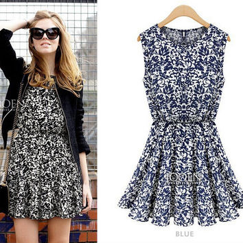 Print Overall Chiffon Sleeveless Pleated Mini Skater Dress