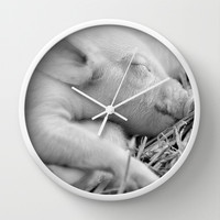Baby Pig Sleeping Wall Clock by Karl Wilson Photography