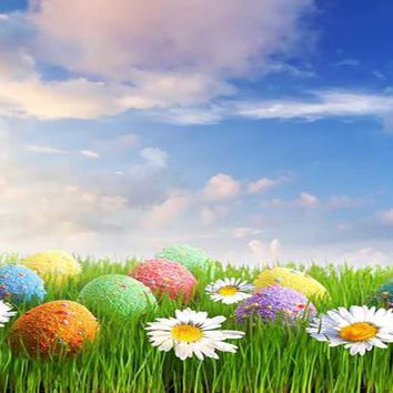 EASTER EGGS IN GRASS PHOTOGRAPHY BACKDROP 4x5 - LCCF9358 - LAST CALL