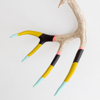 Hand Dipped Painted Antler with Leather Hanging Strap