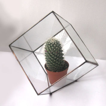 Cube Terrarium.Modern Planter for Indoor Gardening.