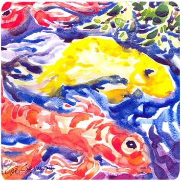 Set of 4 Fish - Koi in the pond Foam Coasters