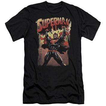 Superman - Lift Up Short Sleeve Adult 30/1
