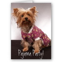 Yorkie Pajama Party Greeting Cards from Zazzle.com