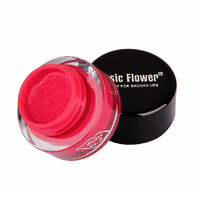 3g Moisture Waterproof Lipstick Long Lasting Candy Red Cushion Lip Stick Vitality Cerise Star NW