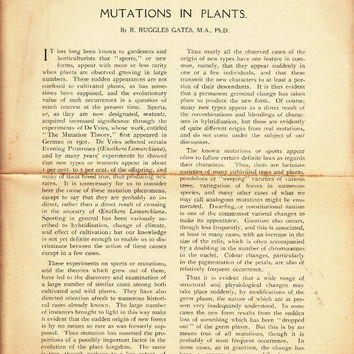 Mutations in Plants