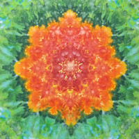 trippy tie dye tapestry mandala red orange green