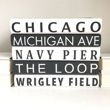 Subway Sign Books, Chicago Subway Books, Chicago Attractions, Custom Subway Sign Books, Subway Art, Customizable City Books, Book Lover