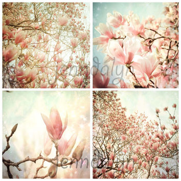 Heaven and Earth - FOUR PHOTO SET, spring photography, magnolia trees, nursery decor, photography gift set, four photo set