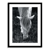 Minted for west elm - Mystery Horse