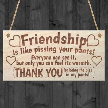Friendship Sign Best Friend Plaque Gift Shabby Chic Heart & Thank You Hanging Gift Plaque Pendant Tags Decor