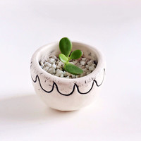 Black and White Ceramic Planter - Succulent Planter - Ceramics and Pottery