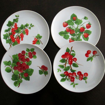 Berries Dessert Luncheon Salad Plates Framboisier Seymour Mann  Set of 4 China Dishes