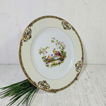 "Salad or Luncheon Plate in Noritake Morimura Chelsea Pattern Dinnerware Individual Fine China Salad / Luncheon 8 1/2"" Plate - 10 Available"