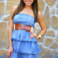 The Cutest Denim Ruffle Dress | Hope's