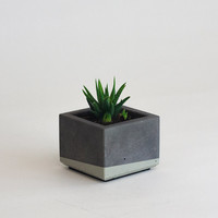 Mini Concrete Planter, Charcoal Grey and Grey