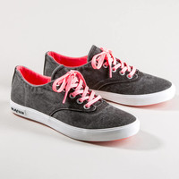 08/63HERMOSA PLIMSOLL POP - Lace Up Sneakers