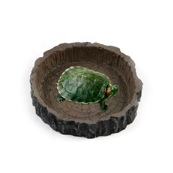 Turtle Snake Reptiles Goods For Reptile Water Bowl Food Dish Feeder Tortoise Live Ants Ant Farm Pet And Lizards Feeding Supplies