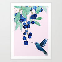 blueberry and humming bird Art Print by Color and Color