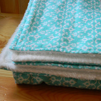 Flannel and Ultra Cuddle Blanket  Aqua and White by HiddenGrins