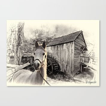 Horse At The Old Mill Canvas Print by Theresa Campbell D'August Art