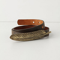 Feather-Clasped Belt