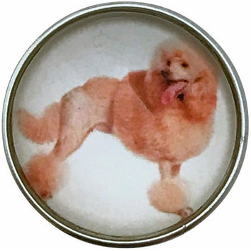 Standard Poodle Dog Snap Charm 20mm for Snap Jewelry