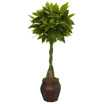 5' Money Artificial Tree in Decorative Planter